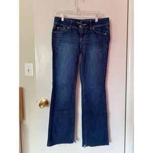American Eagle dark wash curvy jeans